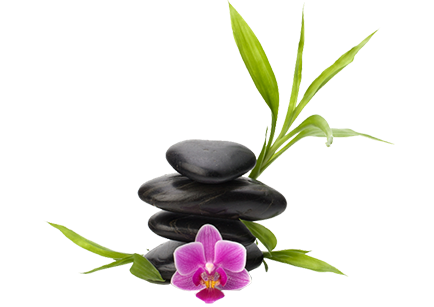 Orchid Medical Spa Nyc